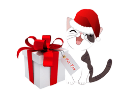 cat-with-gift