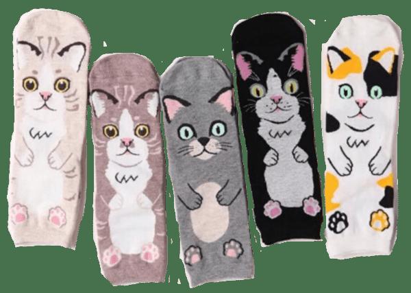 Cat_Hug_Socks