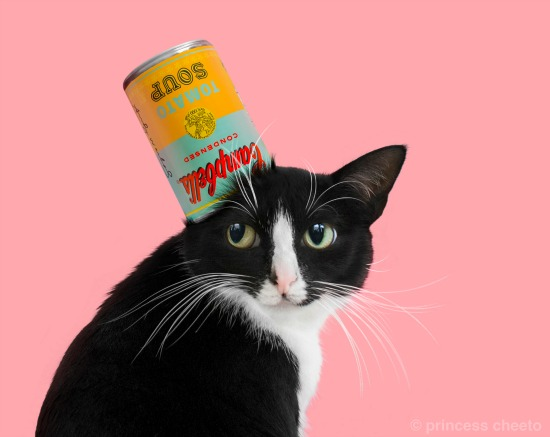 cat-art-show-la