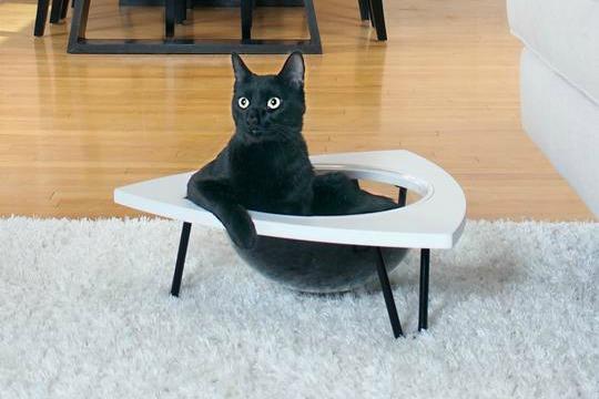PrimetimePetz_Tripod_cat-lounge