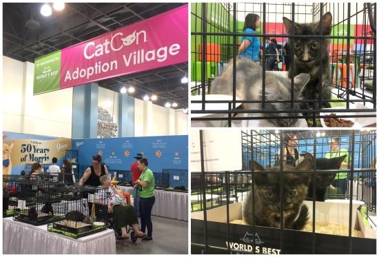Catcon-adoption-village