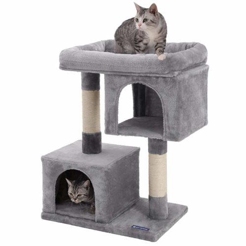 grey-cat-condo