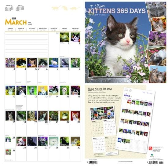 356-kittens-calendar
