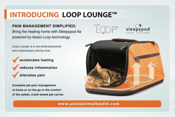 Assisi-Loop-Lounge