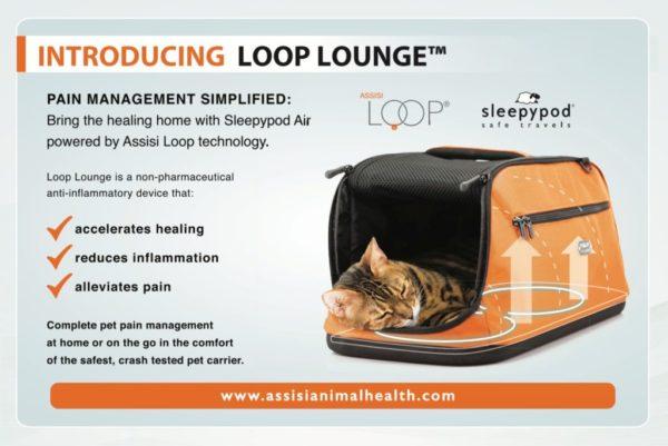 Assisi-Loop-Lounge