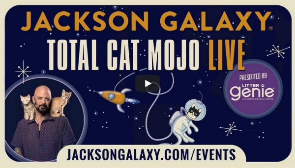 Jackson galaxy 39 s total cat mojo live is coming to a for Jackson galaxy cat mojo
