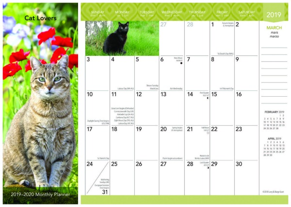 cat-pocket-calendar