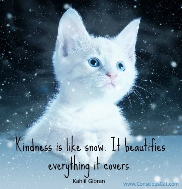 kindness-snow