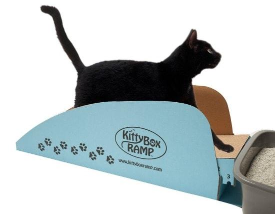 kitty-box-ramp