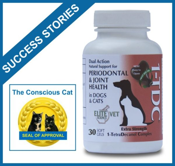 1TDC-success-stories