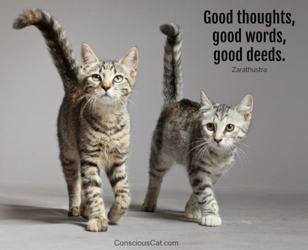 good-thoughts-good-words-good-deeds