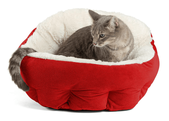 red-cat-bed