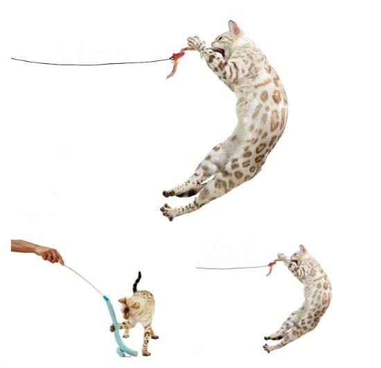 rompicatz-cat-toys