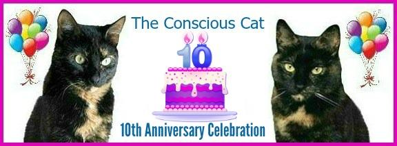 10th-blog-anniversary