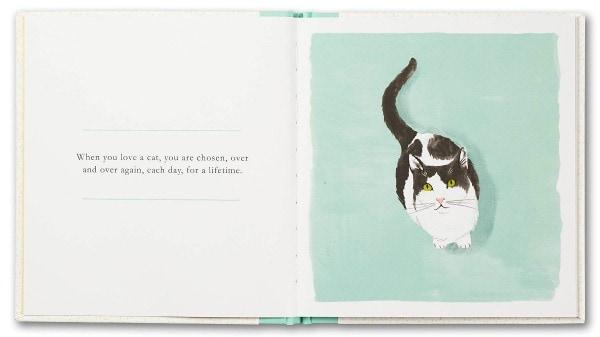 when-you-love-a-cat