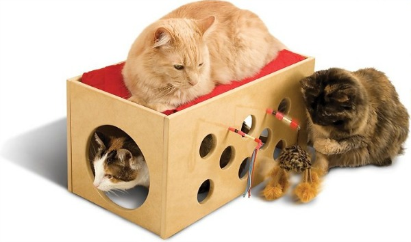 Bootsie's+Bunk+Bed+and+Playroom
