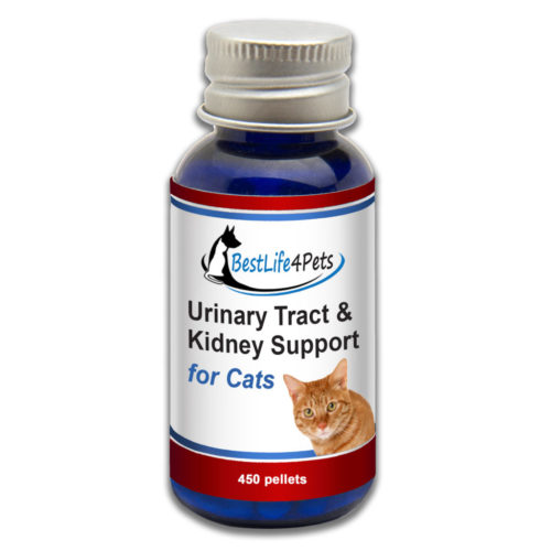 urinary-tract-kidney-support