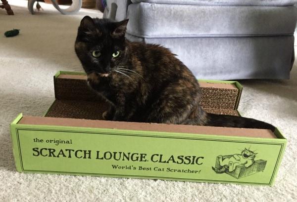 scratch-lounge