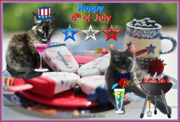 fourth-of-july-cats