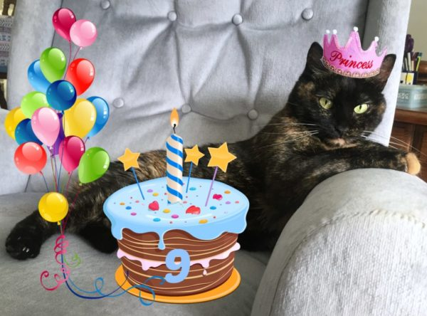 Ruby-birthday-Conscious-Cat