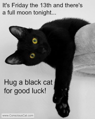 friday-13-full-moon-black-cat