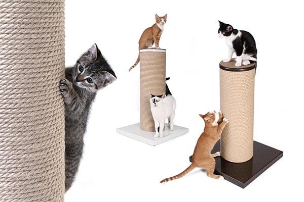 cat-scratching-pole
