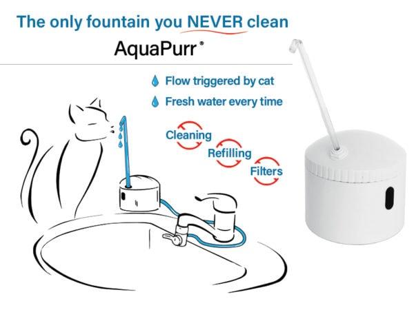 aquapurr-fountain