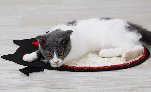 halloween-cat-scratcher