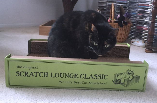 scratch-lounge-review