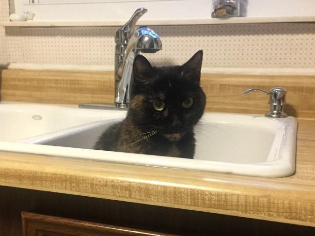 Ruby-kitchen-sink