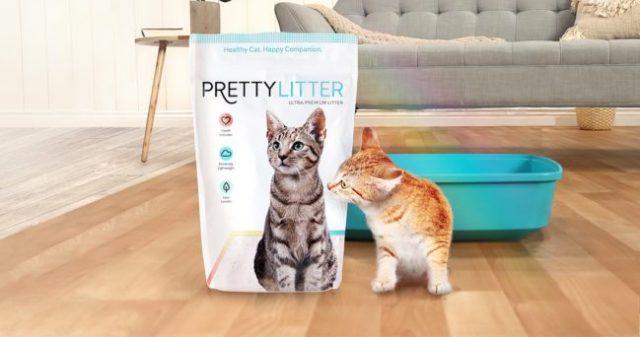 pretty-litter