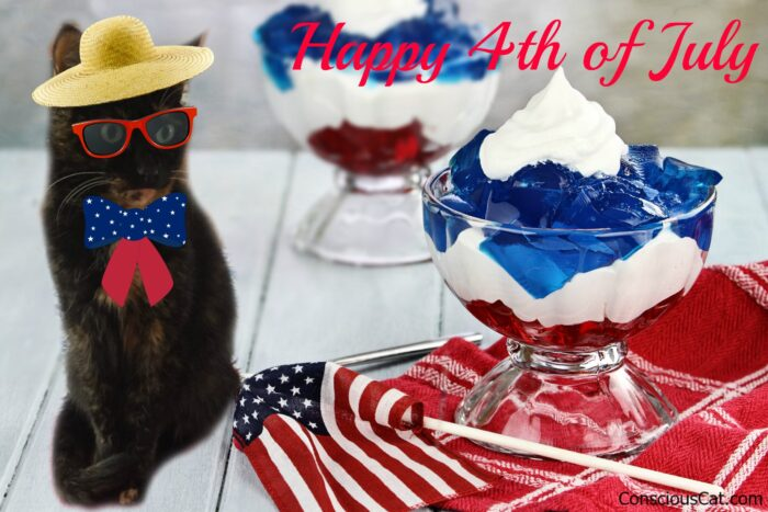 4th-of-july-cat