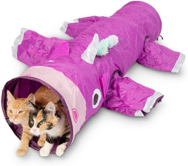 purple-cat-tunnel