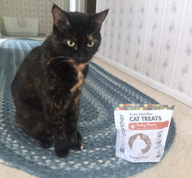 Hauspanther-cat-treats cover