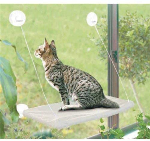 cat-window-perch-suction-cups