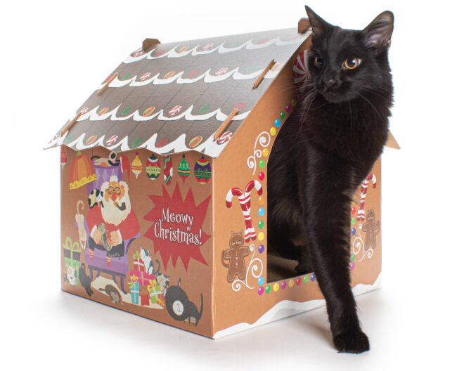 gingerbread-cat-house