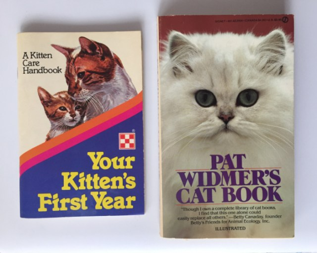 cat-kitten-care-guides