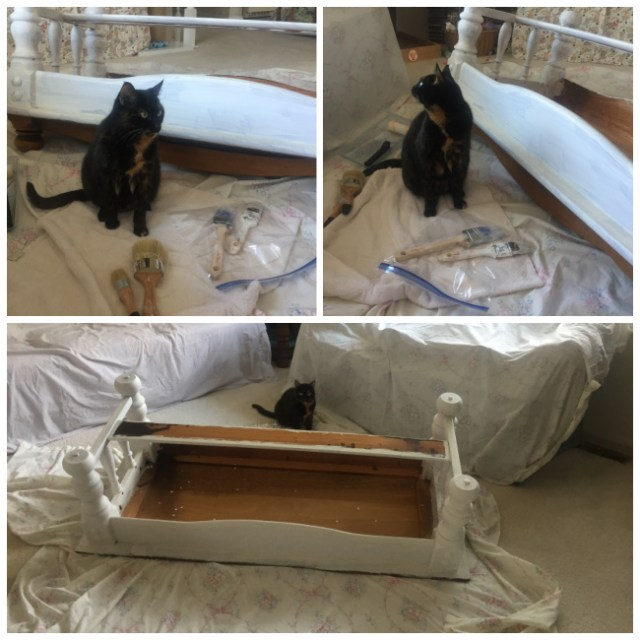 coffee-table-makeover cat