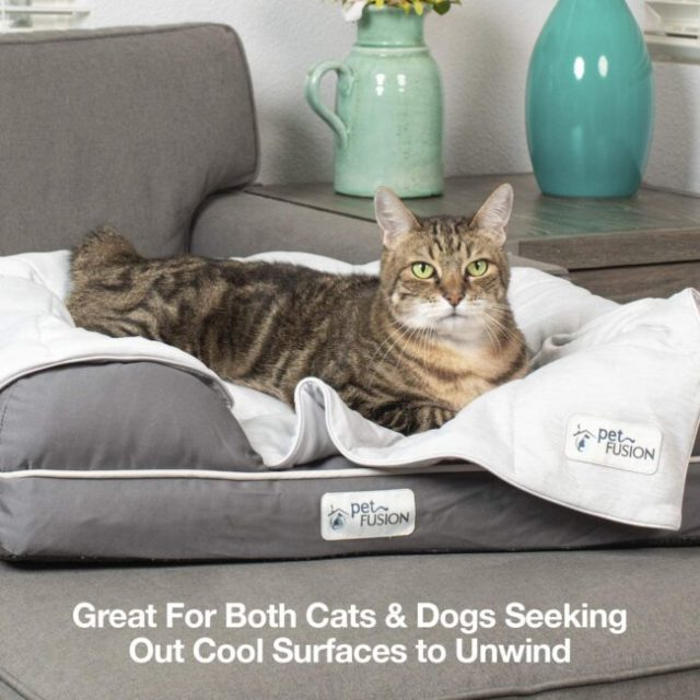 petfusion-cooling-blanket