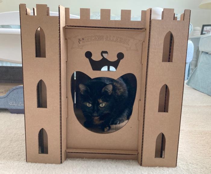 cardboard-cat-castle