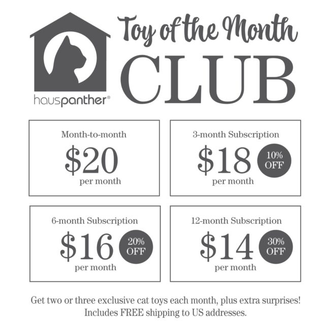 toy-of-the-month-club