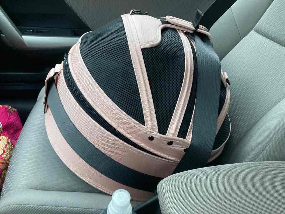 sleepypod-carrier-seatbelt
