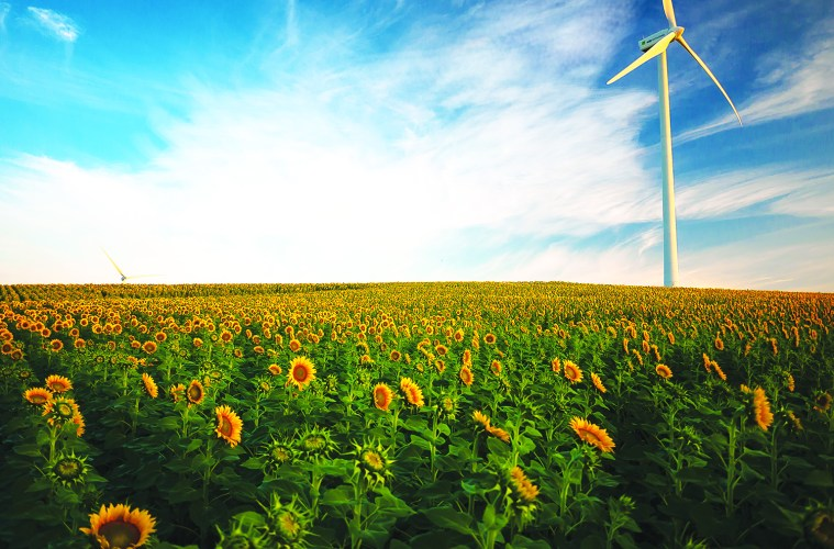 Arcadia Power is bringing renewable energy innovation to households.