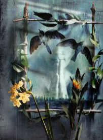 "Richard Tuschman 'Behold the Birds' (n.d) 15""x11.25"""