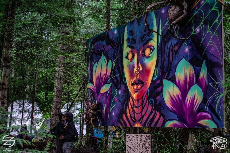 Grove-Art-Shambhala-2019-Sergio-Zuniga-Conscious-Electronic