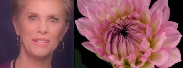 Awaken YOUR Inner Energy Healing Abilities! – Deborah King
