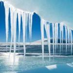 Parts of Ancient Antarctica Were Once As Hot As California, Florida