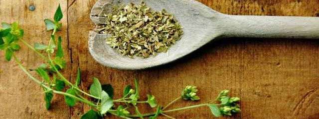 5 Compounds that Make Oregano a Nutritional Powerhouse