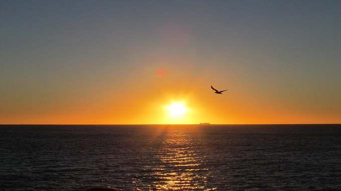 freedom system awakening spiritual