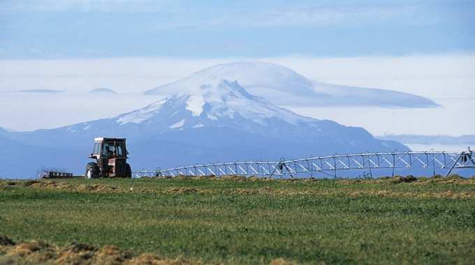 OregonAgriculture